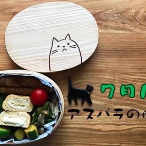 猫のわっぱ弁当ブログ77(アスパラの肉巻き弁当)