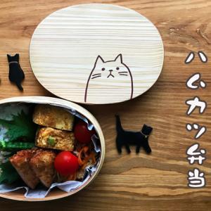 猫のわっぱ弁当ブログ82(ハムカツ弁当)