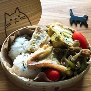 猫のわっぱ弁当ブログ113(鯛の天ぷら弁当)