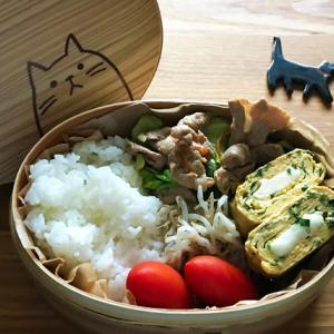 猫のわっぱ弁当ブログ114(肉野菜弁当)