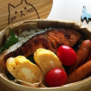 猫のわっぱ弁当ブログ116(鮭のみりん焼き弁当)