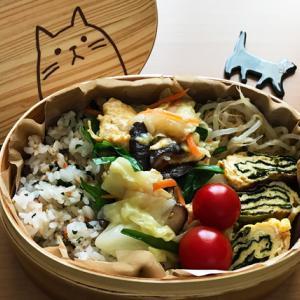 猫のわっぱ弁当ブログ118(卵とキャベツの中華炒め弁当)