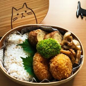 猫のわっぱ弁当ブログ133(かぼちゃコロッケ弁当)