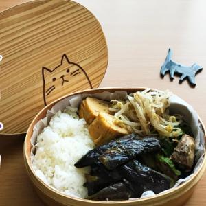 猫のわっぱ弁当ブログ219(茄子の照り焼き弁当)