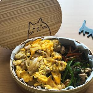猫のわっぱ弁当ブログ222(親子丼弁当)