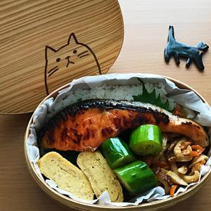 猫のわっぱ弁当ブログ234(鮭のみりん焼き弁当)