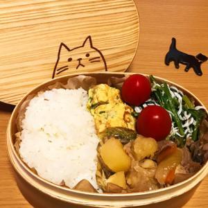 猫のわっぱ弁当ブログ238(肉じゃが弁当)