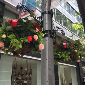 丸の内仲通りを歩くときは、「ハンギングバスケット」の花々に注目してみて!