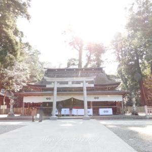 オーブ 写真 神社