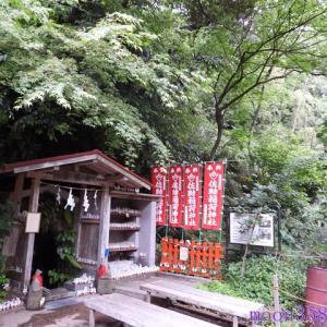鎌倉 佐助稲荷神社 その6 霊狐泉