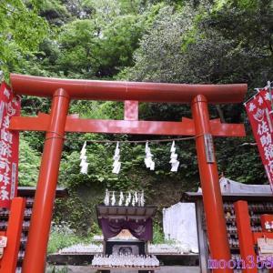 鎌倉 佐助稲荷神社 その7 本殿