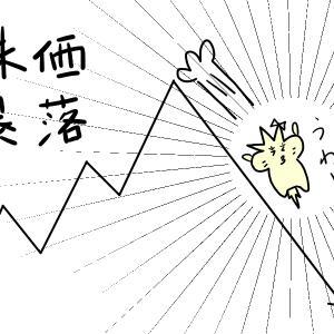 日経平均株価, NYダウが乱高下!これからどうなる!?~ ぴより(妻)の一喜一憂 ~