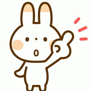 日枝神社(赤坂)の七五三【混雑2021・電話問合せ済】14時~15時がねらい目!