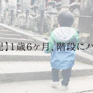 【育児】1歳6ヶ月、階段の上り下りにハマる。