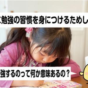 子供が勉強の習慣を身につけるために取り入れた「相談」とは?