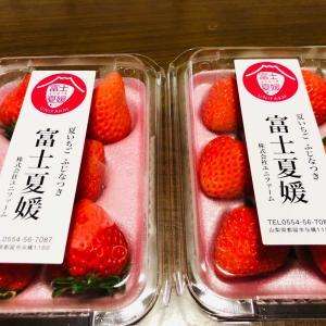 夏イチゴを頂きました