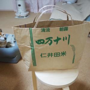 米袋のエコバッグ 。下着も靴下も2組でいけそう。