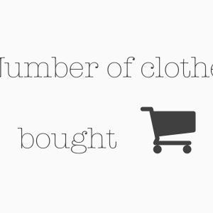 【ゆるミニマリストの服の数】2021年の上半期に買った服の数