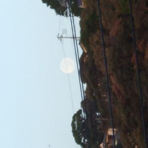 十七夜🌕立待の月です🌄十六夜の月を撮る予定でしたが📷うっかり🌾更に(;^ω^)ほぼ朝です🐓