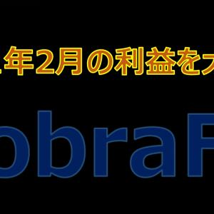 CobraFXの2021年2月の利益を大公開!高利益率を叩き出すという噂は本当か検証してみた?