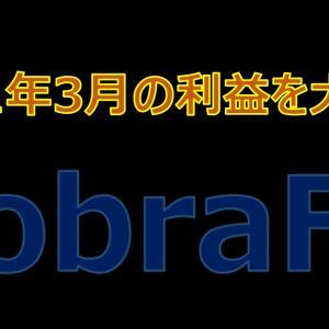 CobraFXの2021年3月の利益を大公開!高利益率を叩き出すという噂は本当か検証してみた?