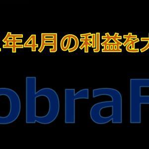 CobraFXの2021年4月の利益を大公開!レバレッジ1倍で地道な利益を積み重ねる!