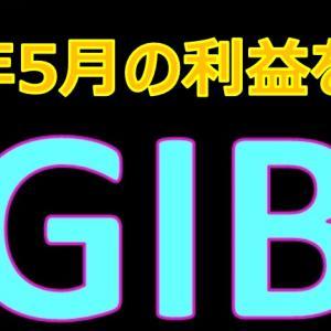 GIBの2021年5月の利益を大公開!月利7%は果たして本当か? Global Investment Bank