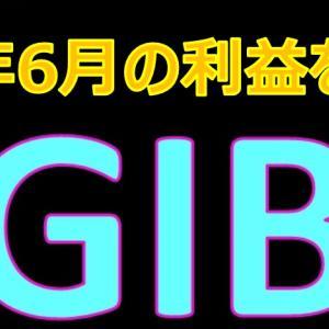 GIBの2021年6月の利益を大公開!月利7%は果たして本当か? Global Investment Bank