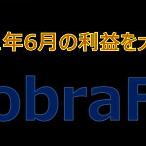 CobraFXの2021年6月の利益を大公開!先月の大敗から今月は一体いくらとなったのか