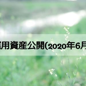 運用資産公開(2020年6月)