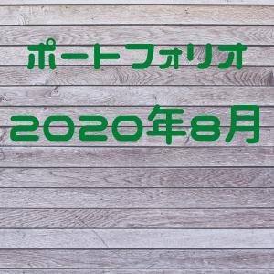 【公開】育児パパの2020年8月ポートフォリオを公開します。