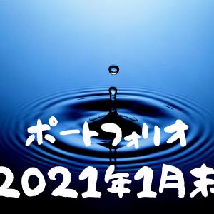 【投資実績】育児パパの2021年1月のポートフォリオを公開します。