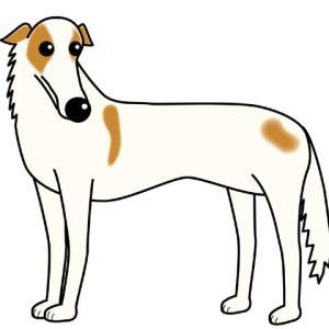 車の窓から顔を出す犬で思い出す東名高速道路での事故