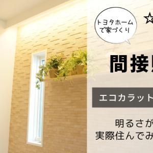 間接照明でおしゃれな空間|我が家の間接照明設計を紹介