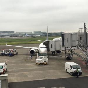 五島列島石鯛2020 その1ー飛行機欠航トラブル