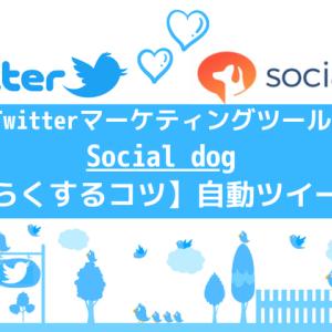 Socialdogの自動ツイートの使い方:最新情報【Twitter運用を楽にするコツ!】