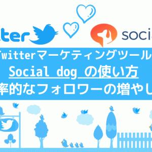 Socialdogの使い方は?3つ覚えればOK【楽してフォロワーを増やす方法を解説】