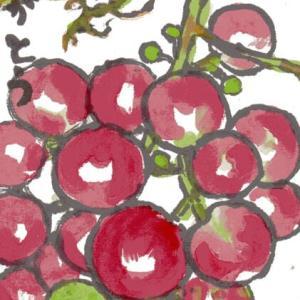 「絵手紙もらいました―葡萄―」について考える