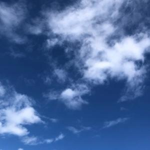 【非正規の待遇格差/最高裁判決】ボーナス・退職金の不支給は不合理ではない!?