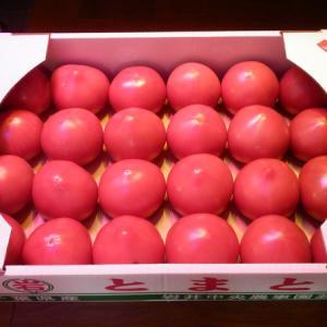 トマトが安い