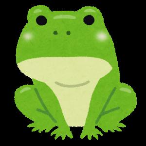蛙が鳴いている