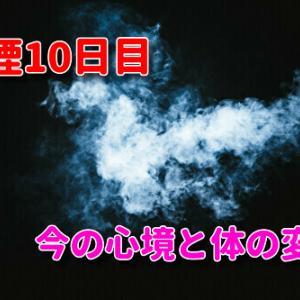 禁煙10日目の心境と体の変化