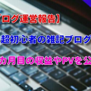 【ブログ運営報告】超初心者の雑記ブログ3カ月目の収益やPVを公開