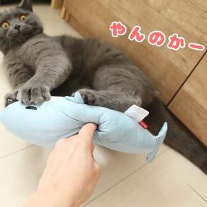 猫が大好きなおもちゃ【けりぐるみ】