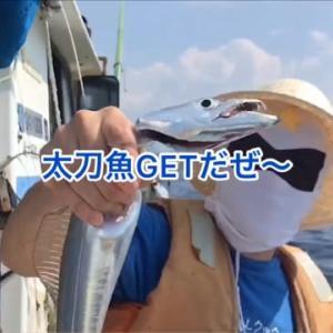 静岡に釣りに行ってきました