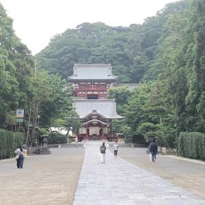 鎌倉時代の中心地【鶴岡八幡宮】