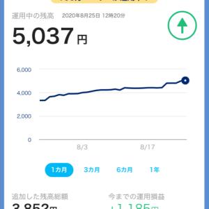 PayPayボーナス運用  その5 5000円突破‼︎