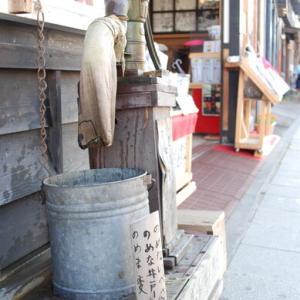 2008年北海道の旅⑤~小樽のねこよ