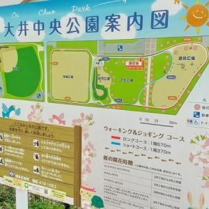 大井中央公園 博多区 公園 日記