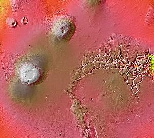 【エジプト/火星】宇宙人?ツタンカーメン王と共に発見された胎児のミイラ#3